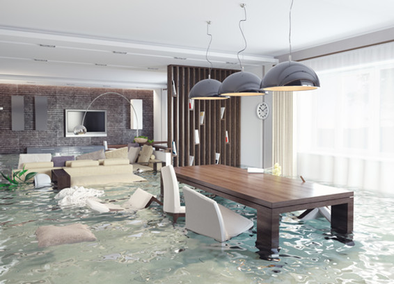Always Call a Professional for Water Damage Repairs